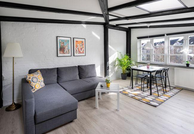 Aalborg - Studio